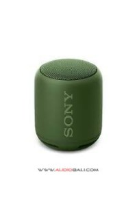 SONY SRS - XB10 GREEN